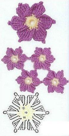 flowers_violet