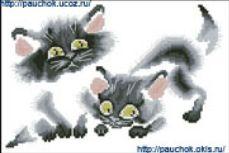 коты черные